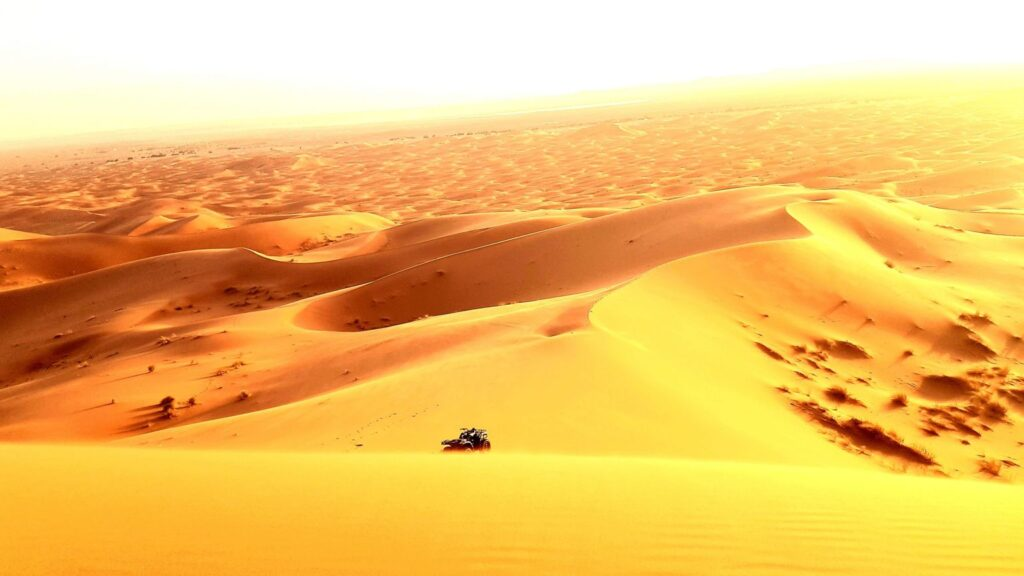 Morocco Multi Day Tours - Guided Morocco Tours , Morocco Gudied Tours , Package Guided Morocco Tours